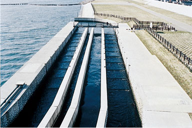 The Nagaragawa Estuary Barrage Attraction Flow Type Fishway